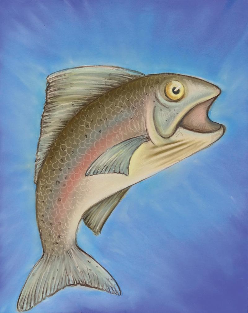 flo kanban illustration jeunesse poisson truite pastels secs
