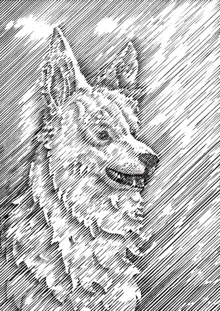 Flo kanban illustration jeunesse Berger blanc trait anglais