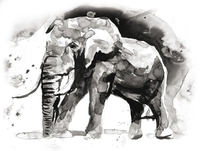 Flo kanban illustration jeunesse éléphant