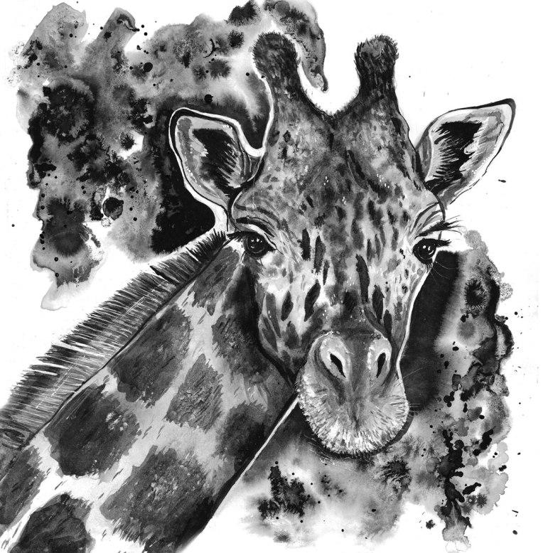 Flo_Kanban_illustratrice_N&B_encre_giraphe