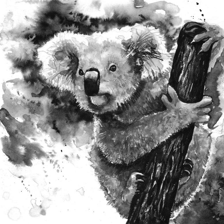Flo_Kanban_illustratrice_N&B_Koala